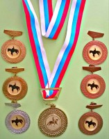 «Открытое первенство Ярославской области по конному спорту (паралимпийская выездка и Специальная Олимпиада)»